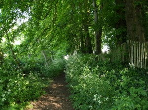 Footpath from Church Road