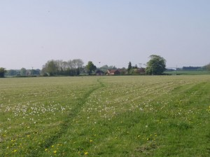 Looking towards Hethel Road