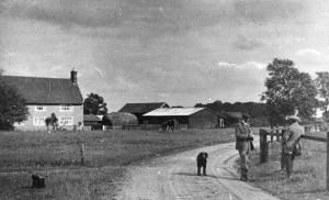 high house farm - wreningham common
